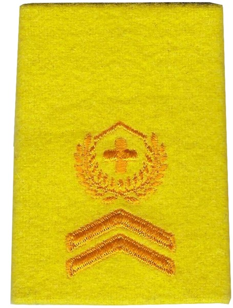 Photo de Sergent-major insigne de grade de troupes blindée
