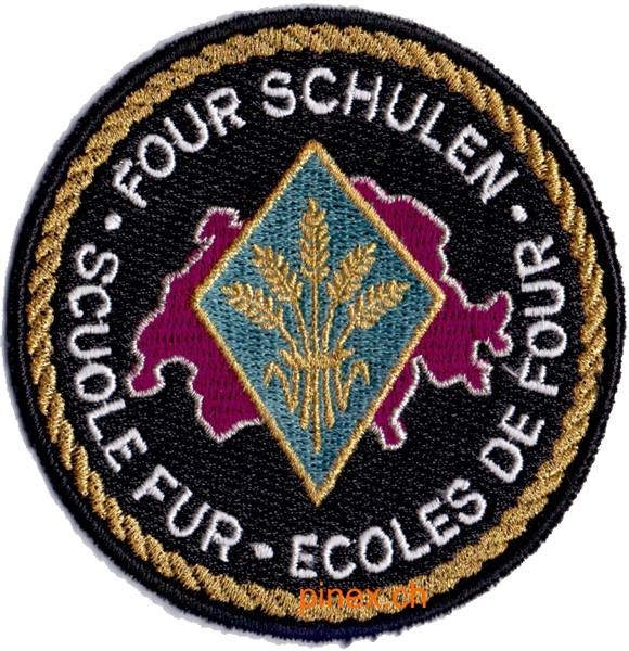 Photo de Fourier Schulen Schulbadge Armee 95